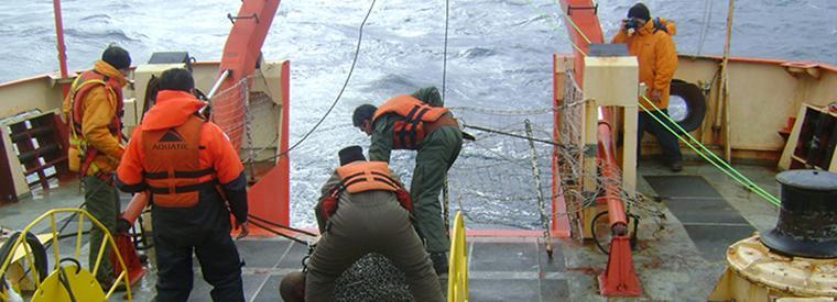 Tareas a bordo del Buque ARA Puerto Deseado